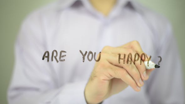 Thumbnail for Are You Happy ?