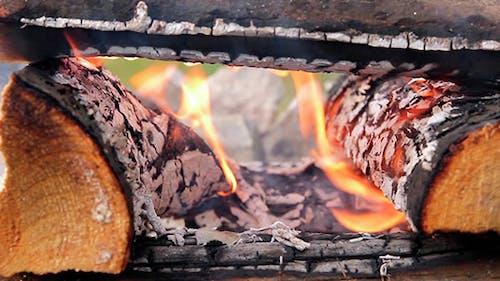 Holzscheite verbrannt