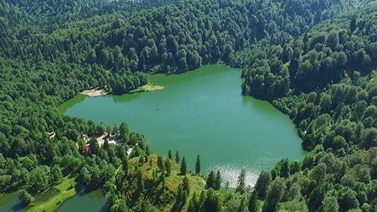 Cover Image for Aerial View Over The Forest And Lake