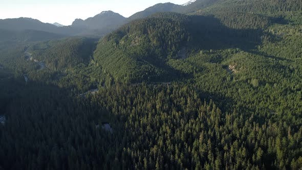 Thumbnail for Summer Forest Aerial Over Mountains Near Whistler Canada