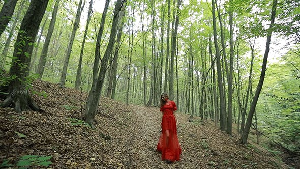 Thumbnail for Beautiful Woman Walking Through Green Forest