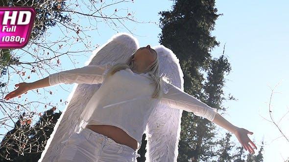 Thumbnail for Angel in Sunlight