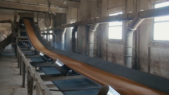 Corn Processing Factory, Food Industry