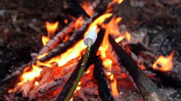 Thumbnail for Marshmallow On a Campfire
