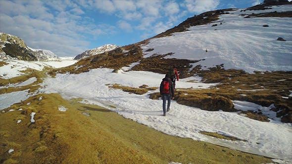 Thumbnail for Mountain Traveler in the Winter
