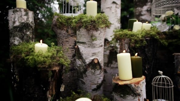 Thumbnail for Beautiful Wedding Decor With Candles, Birch Logs