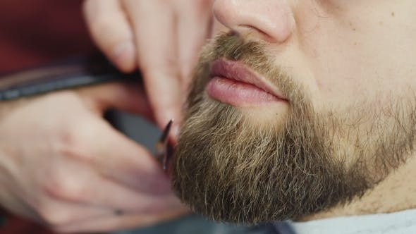 Thumbnail for Men's Hairstyling And Haircutting In a Barber Shop Or Hair Salon. Grooming The Beard. Barbershop