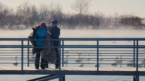 Elderly Couple Embracing In The Background Of The Lake With Swans