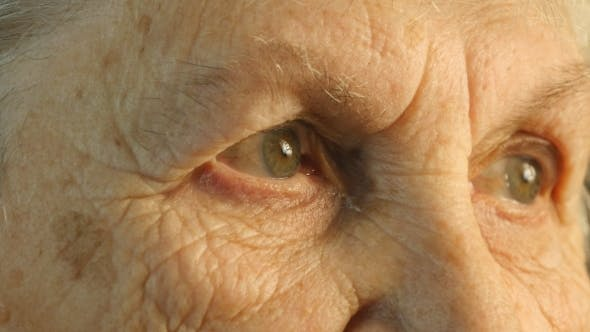 Thumbnail for Portrait Of a Old Woman's Gaze