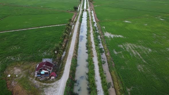 Fly over the road in paddy field