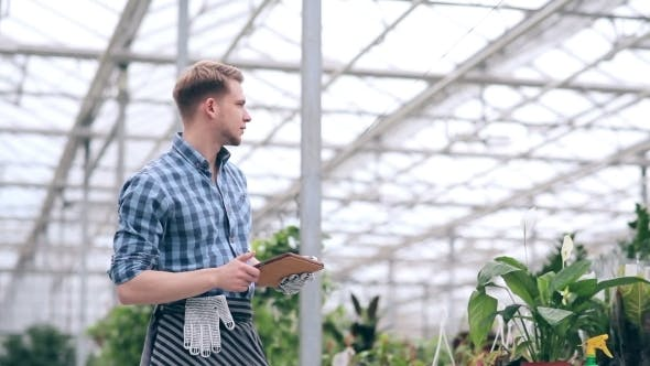 Cover Image for Florist With Digital Tablet In Greenhouse