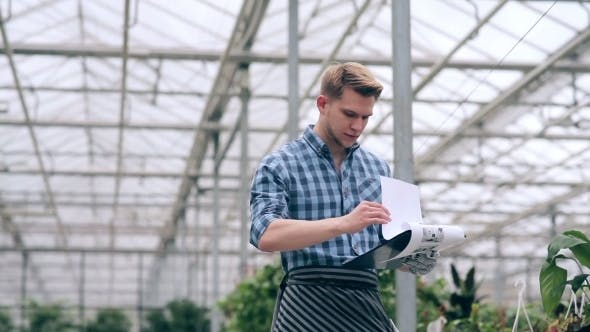Cover Image for Florist Holding Accounting Of Plants In Greenhouse