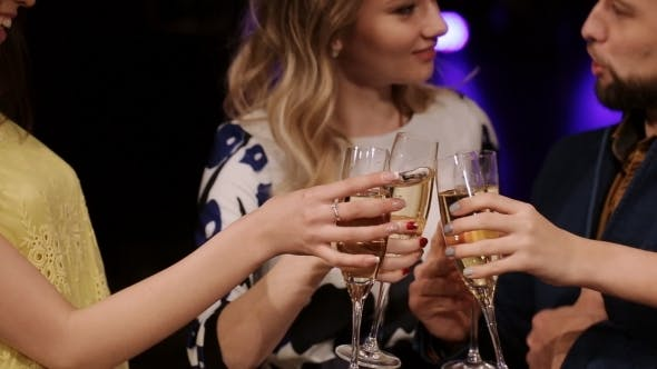 Thumbnail for Friends At a Party Drinking Champagne And Having Fun