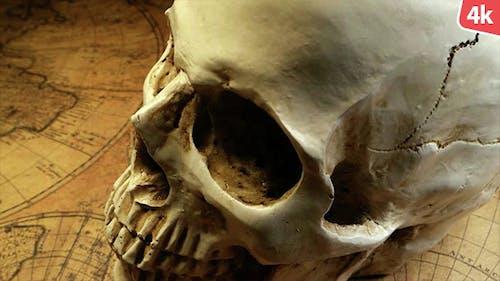 Human Skull 90