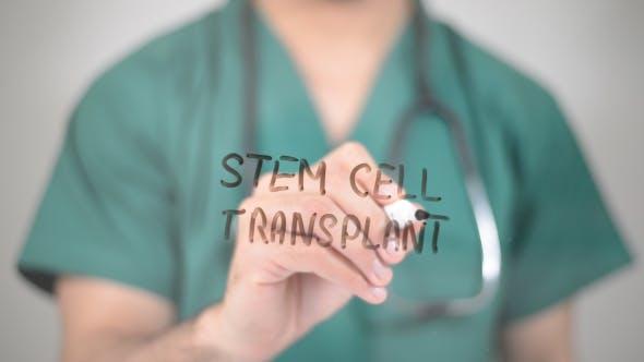 Thumbnail for Stem Cell Transplant