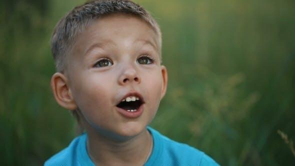 Thumbnail for Surprised Little Boy