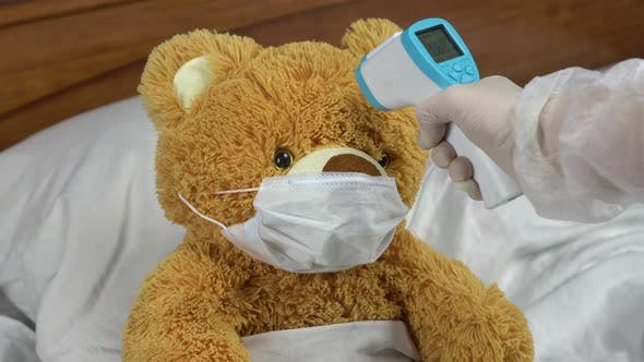 Thumbnail for A Teddy Bear Is Measured with an Infrared Thermometer. The Doctor Makes a Temperature Measurement