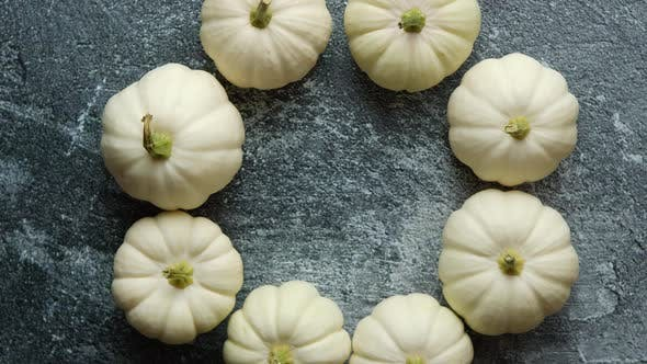Thumbnail for Composition of Cute White Baby Boo Mini Pumpkins Placed in Circle on Dark Stone Table