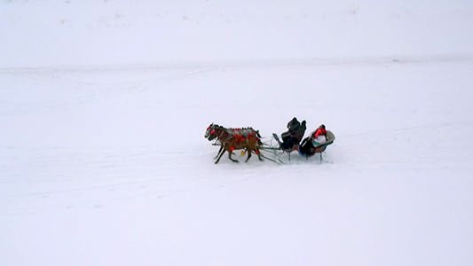 Cover Image for Sleigh Rides 3