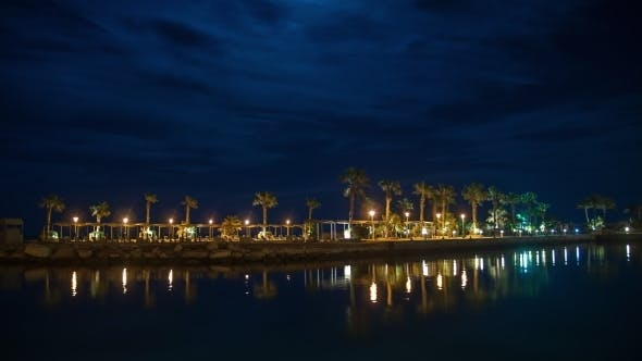 Thumbnail for Tropical Beach In The Moonlight