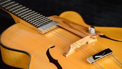 Jazz Electric Guitar Rotating