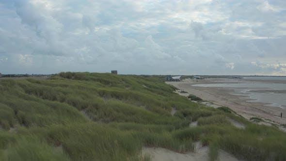 European Marram Dune Grass in Sand Near a Beach with Kitesurfer