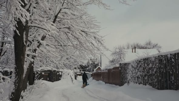 Thumbnail for Snowy Winter In The Village