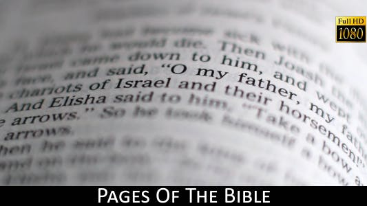 Cover Image for Pages Of The Bible 8