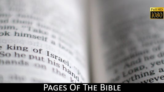 Cover Image for Pages Of The Bible 9