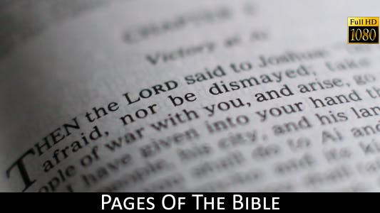 Thumbnail for Pages Of The Bible 10