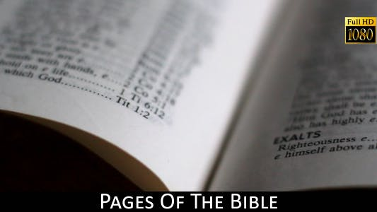 Cover Image for Pages Of The Bible 12