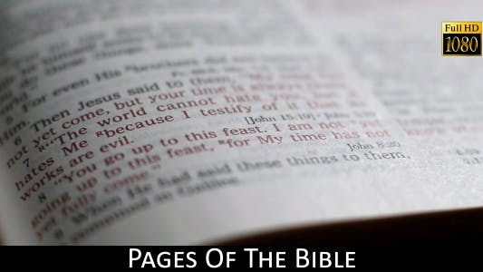 Thumbnail for Pages Of The Bible 14