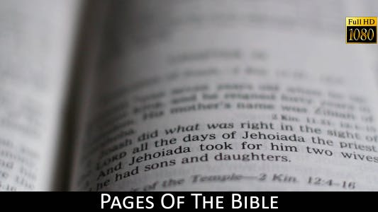 Thumbnail for Pages Of The Bible 17