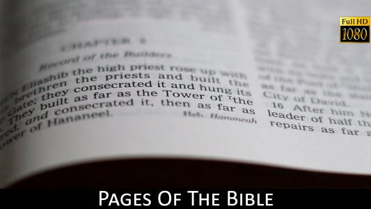 Cover Image for Pages Of The Bible 18