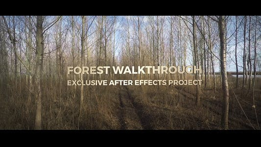 Thumbnail for Forest Walkthrough