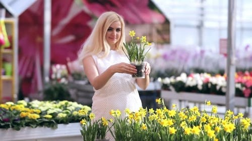 Buyer Admires The Flowers In Greenhouse