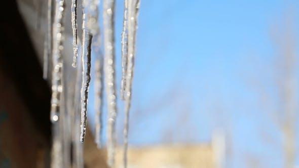 Thumbnail for Schmelzende Eiszapfen im Frühling