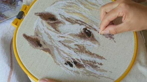 Thumbnail for Embroidery Cross Stitching