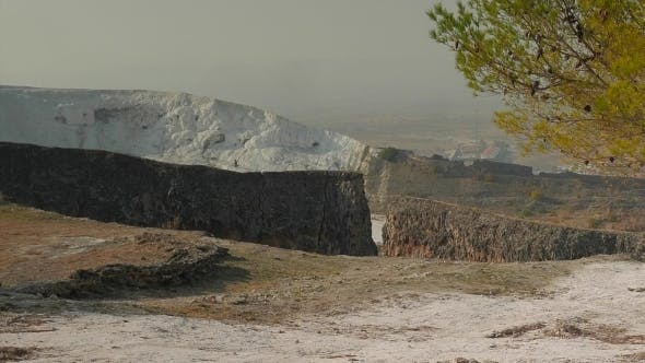 Thumbnail for Pine Tree With An Ancient Wall And Travertines In a Distance, Pamukkale, Turkey.