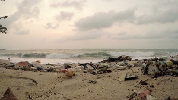 Thumbnail for Garbage On Beach, Environmental Pollution Concept
