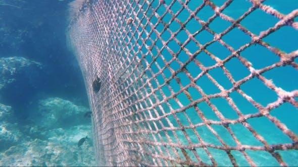 Absperrgitter unter Wasser
