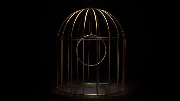 Thumbnail for Rotating Design in the Form Gold Cage of the in a Black Background