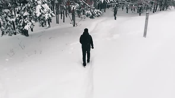 Thumbnail for Lone Man Walking Through Snow