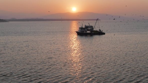 Thumbnail for Fishing Trawler Surrounded By Many Seagulls With Sunrise On The Background
