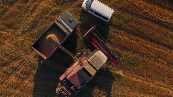 Thumbnail for Agricultural Machinery Working On Filed At Harvest