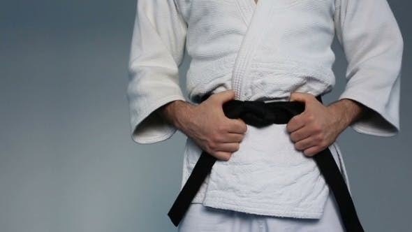 Thumbnail for Martial Arts Master With Black Belt