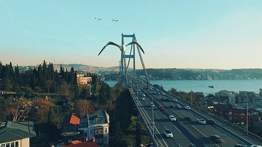 Thumbnail for Bosphorus Bridge Traffic 1
