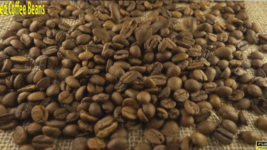 Thumbnail for Poured Coffee Beans