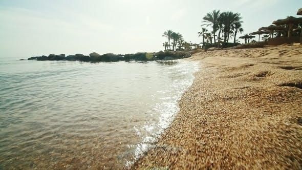 Thumbnail for Surf Line At Sunrise