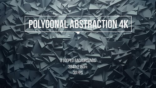 Polygonal Abstraction